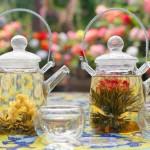 お茶のルーツ!中国六大茶(+花茶)について解説します