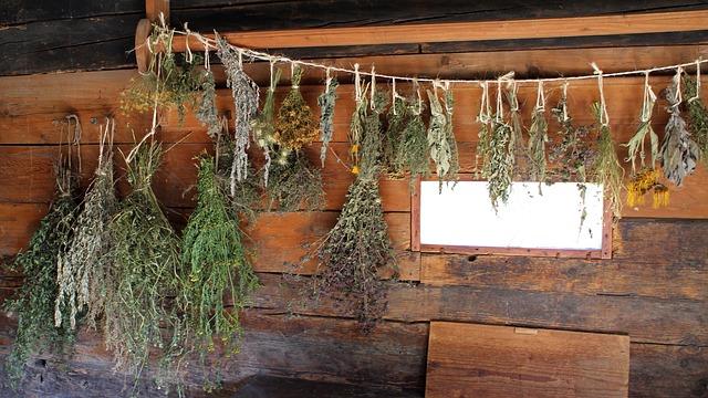 dry-herb