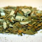 マテ茶の効能と副作用、飲み方まとめ《飲むサラダ》