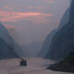峡州碧峰の産地や効能、名前の由来まとめ【中国茶】