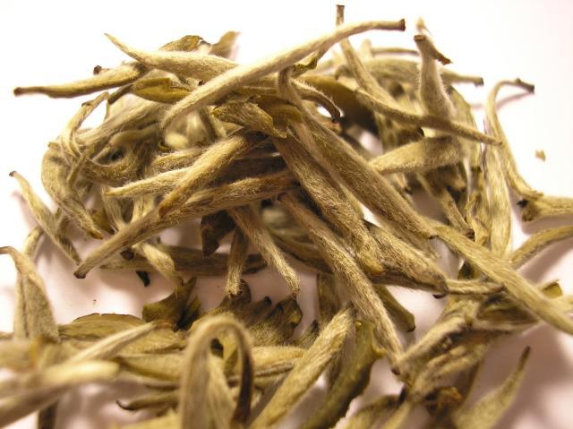 Bai_Hao_Yin_Zhen_tea_leaf