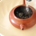 白毫烏龍茶の効能や由来、産地まとめ【中国青茶】
