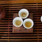 富丁茶(苦丁茶)の効能や成分、特徴まとめ【中国茶】